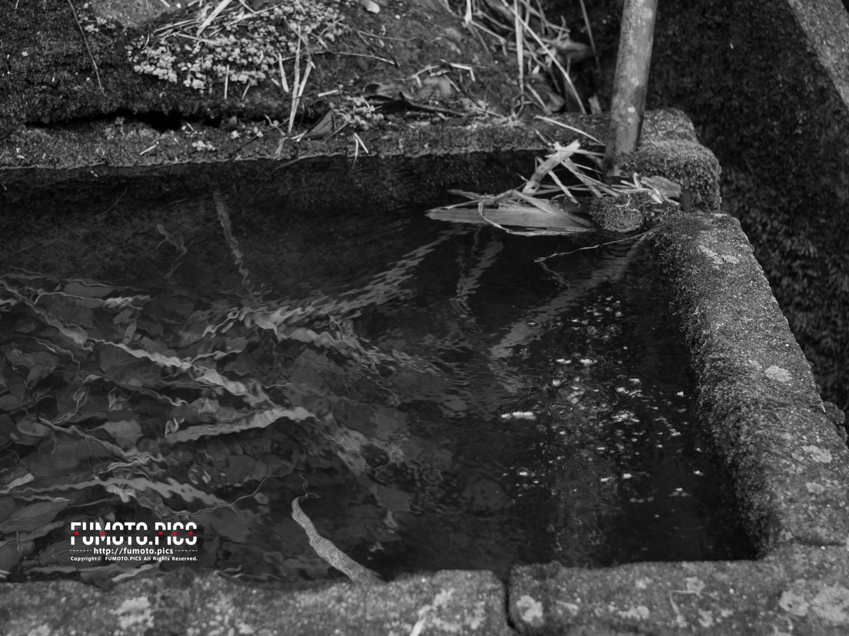 湧水を溜めているコンクリート製の貯水槽